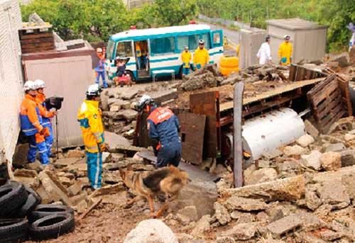 岐阜県警と災害救助犬で災害警備訓練を実施