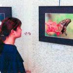 福井県福井署がロビーに市民の作品展示スペース開設