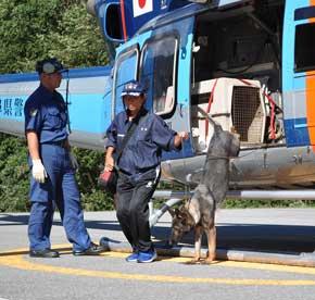 岐阜県警で嘱託警察犬広域搬送等訓練を実施
