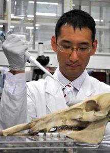 岐阜県警科捜研の森主任研究員が動物種同時識別法で特許