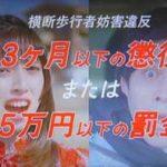 栃木県警が横断歩道での歩行者優先を呼び掛けるテレビCMを制作
