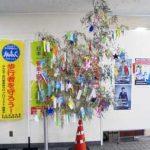 広島県安佐南署ロビーに歩行者ゼロの願い込めた七夕飾りを展示