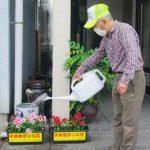 徳島県鳴門署がニチニチソウで「ながら見守り」