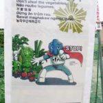 岐阜県大垣署のマスコット・水都マンが野菜盗防止を看板で啓発