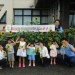 山形県酒田署で「ひまわりの絆プロジェクト」の花が咲く